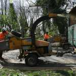 Artemis Tree Services using a wood chipper to rid of excess wood