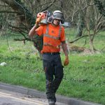 Artemis Tree Services team member carrying a chainsaw