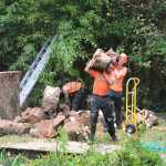 Removing Tree Stumps