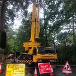 road closed for tree removal
